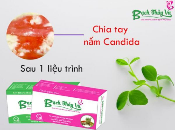 Thuốc trị nấm Candida